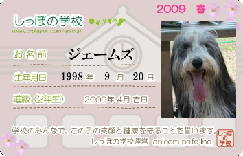anicom2009.jpg